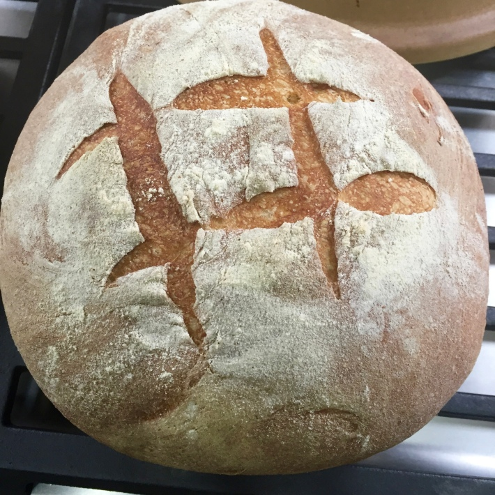 Rose's Basic Hearth Bread